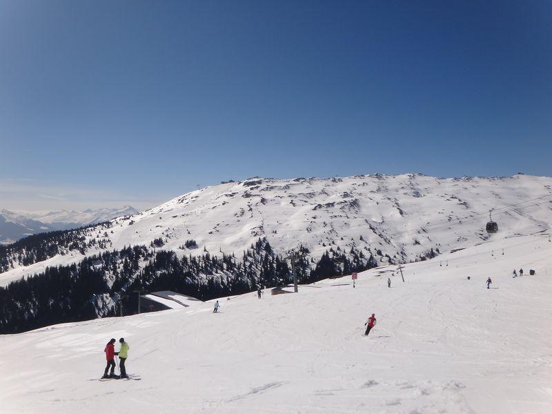 Swiss 2012 D4 D1 ski FLF (79)