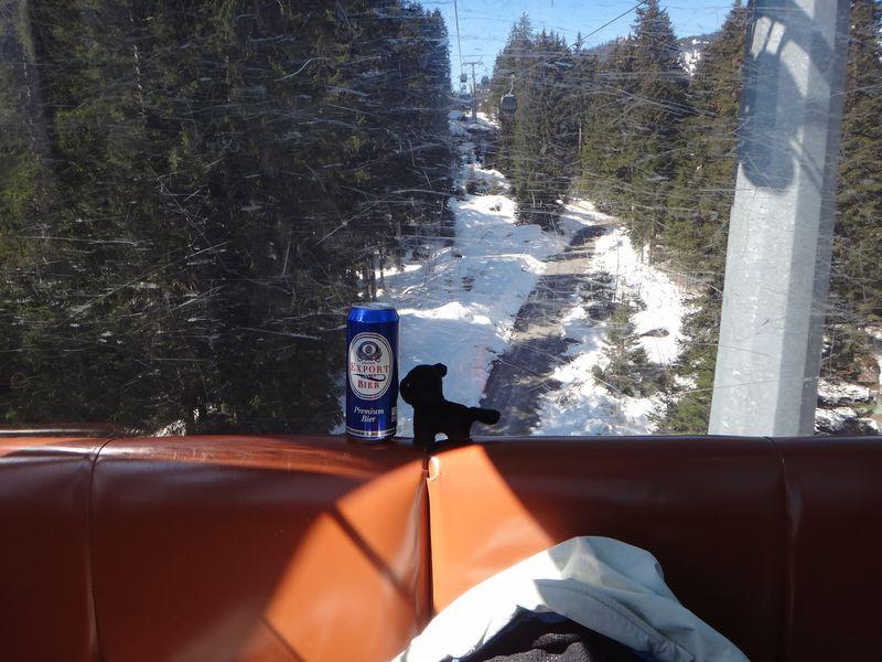 Swiss 2012 D4 D1 ski FLF (96)