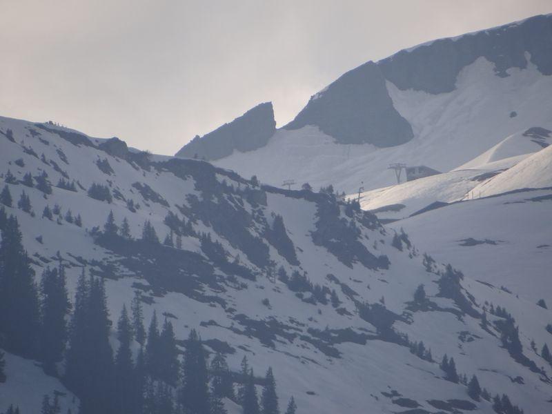 Swiss 2012 D8 D4 ski FLF (111)